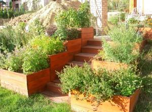 A kész lépcső, a pompázó fűszereimmel
